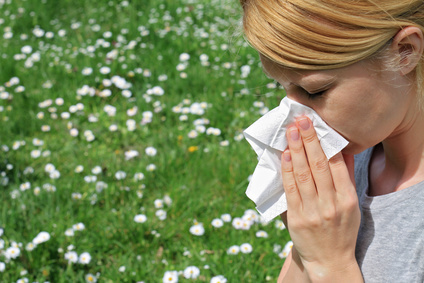 7 Natural Allergy Remedies to Try to Improve Seasonal Allergy Symptoms