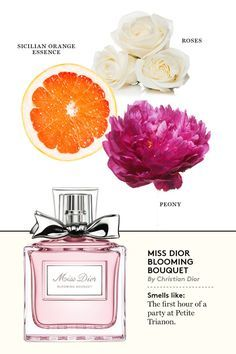 1000+ ideas about Dior Perfume on Pinterest | Christian Dior Perfume, Perfume and Perfume Ad (3712)