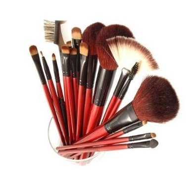 Buy SHANY Professional 13-Piece Cosmetic Brush Set with Pouch, Set of 12 Brushes and 1 Pouch Online now in UK (7282)