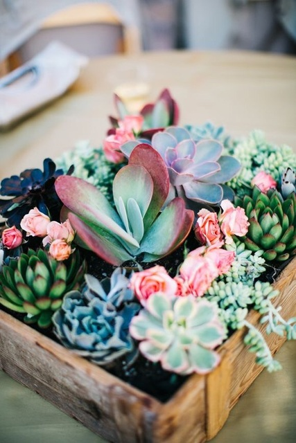 http://blog.freepeople.com/2015/08/california-country-wedding/ by Almita   We Heart It (7512)