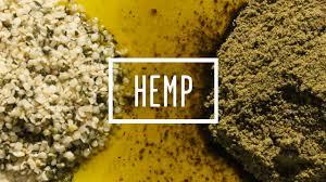 Why Hemp Should Be Your New Hero Food | Goodlifer (14868)