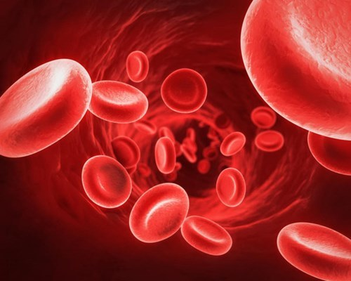 9 Natural Ways To Increase Red Blood Cells Count  | Best Health Tips (15897)